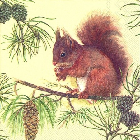 "IHR Lunch Servietten ""HUNGRY SQUIRREL"" 33 x 33 cm"