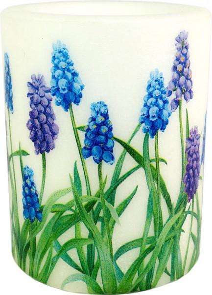 """Windlicht-Kerze """"Muscari blue"""" Größe XL 100 h Ø10cm H12cm"""