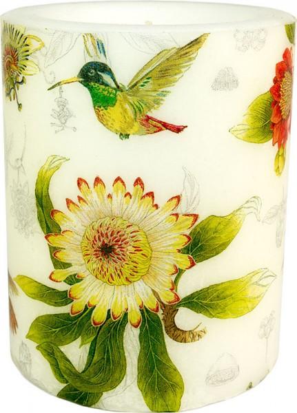 "Windlicht-Kerze ""Hummgingbird and Blossoms"" Größe XL 100 h Ø10cm H12cm"